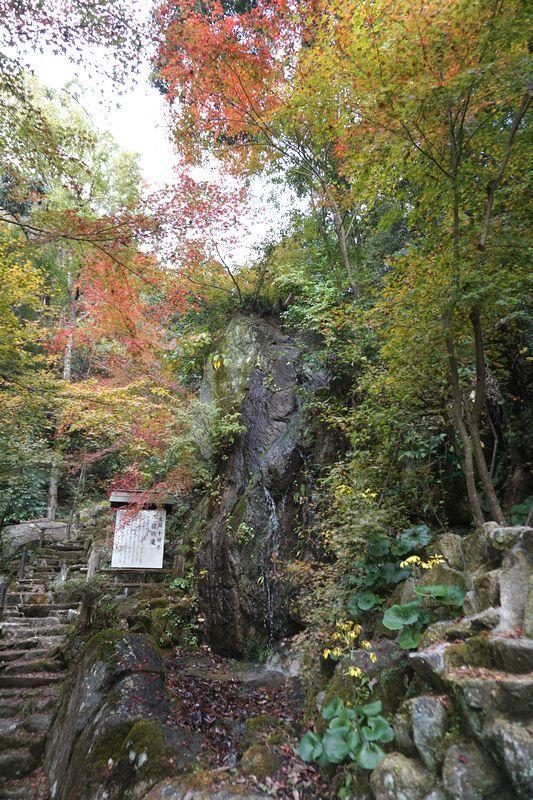 十可苑 孫の滝