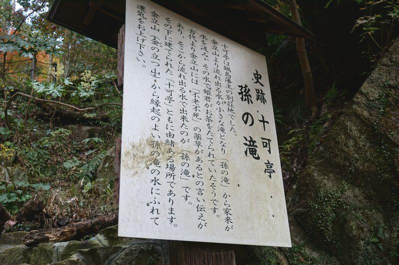 十可苑 孫の滝の説明