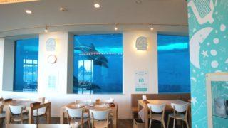 イルカの見えるレストラン 海響館 下関