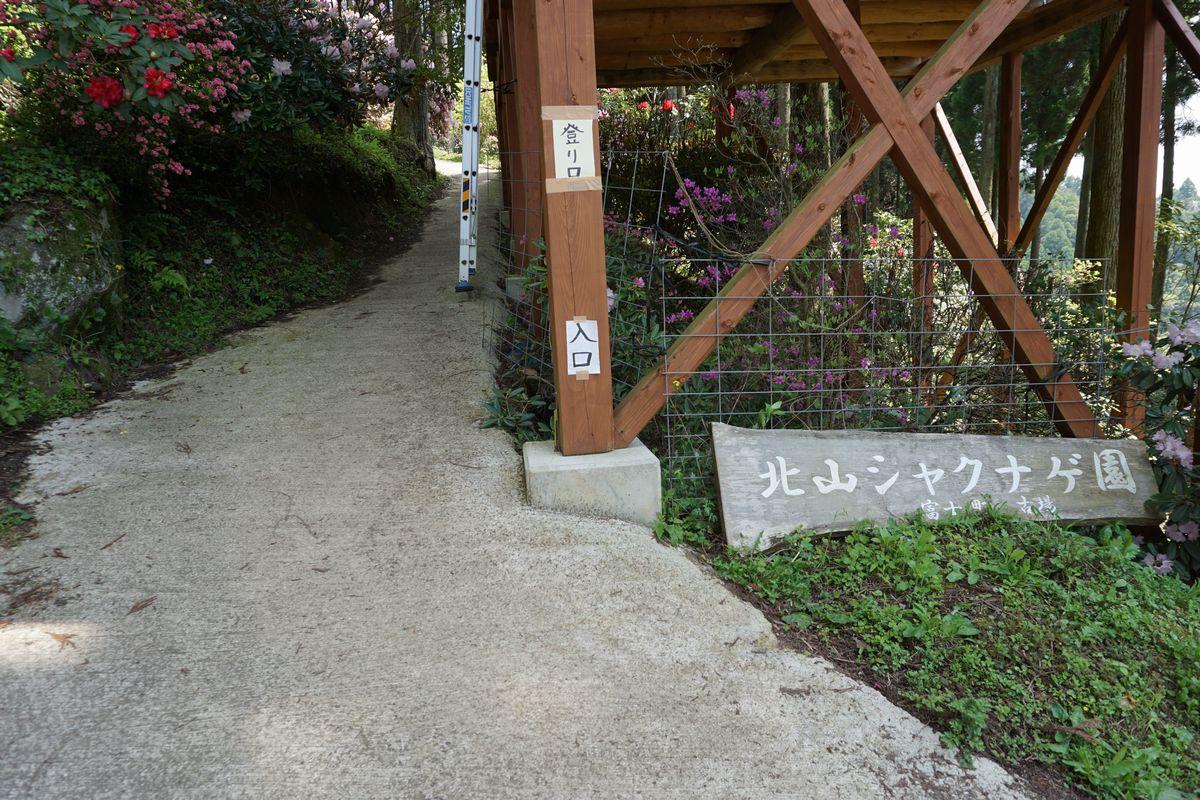 北山シャクナゲ・ツツジ園