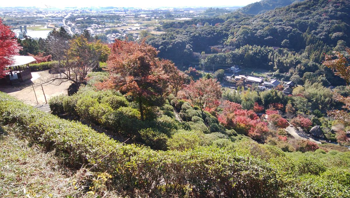十可苑 2019年11月 紅葉を楽しむ 展望台