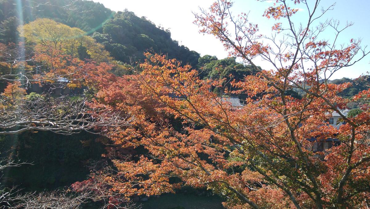 陶山神社 有田焼 紅葉も美しい